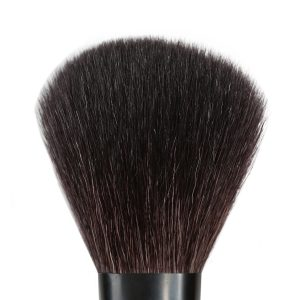Powder Brush #300
